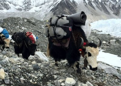 everest-base-camp-gallery (8)